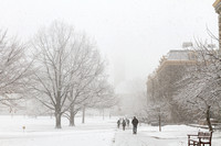 Winter storm Nemo at Cornell